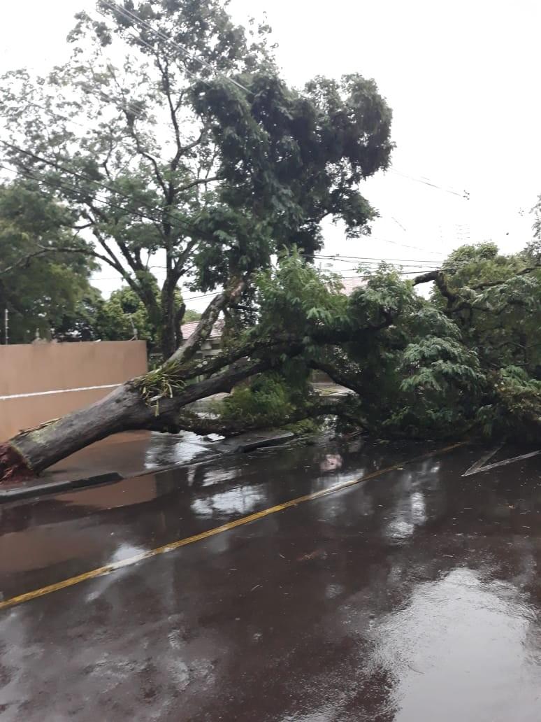 Chuva provoca pontos de alagamentos em Maringá