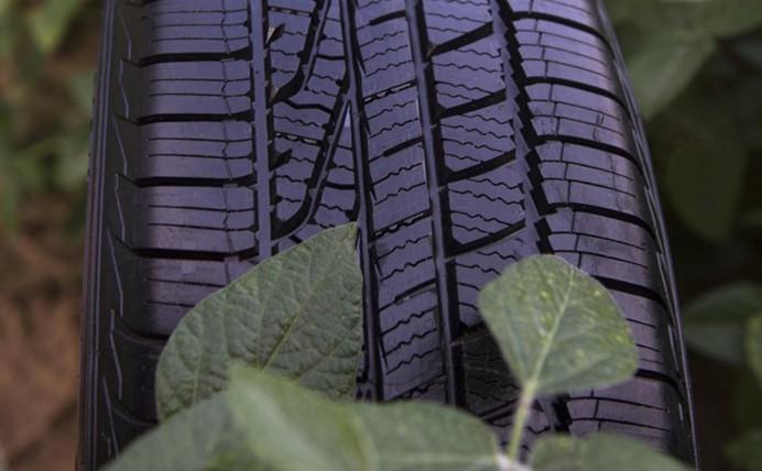 Novos mercados para a soja: pneu feito do óleo do grão