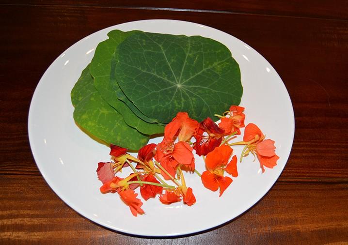 Culinária paraense usa plantas comestíveis com alto valor nutritivo