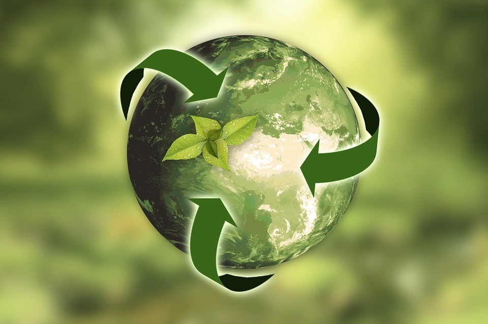 Cooperativas de crédito implementam políticas de sustentabilidade
