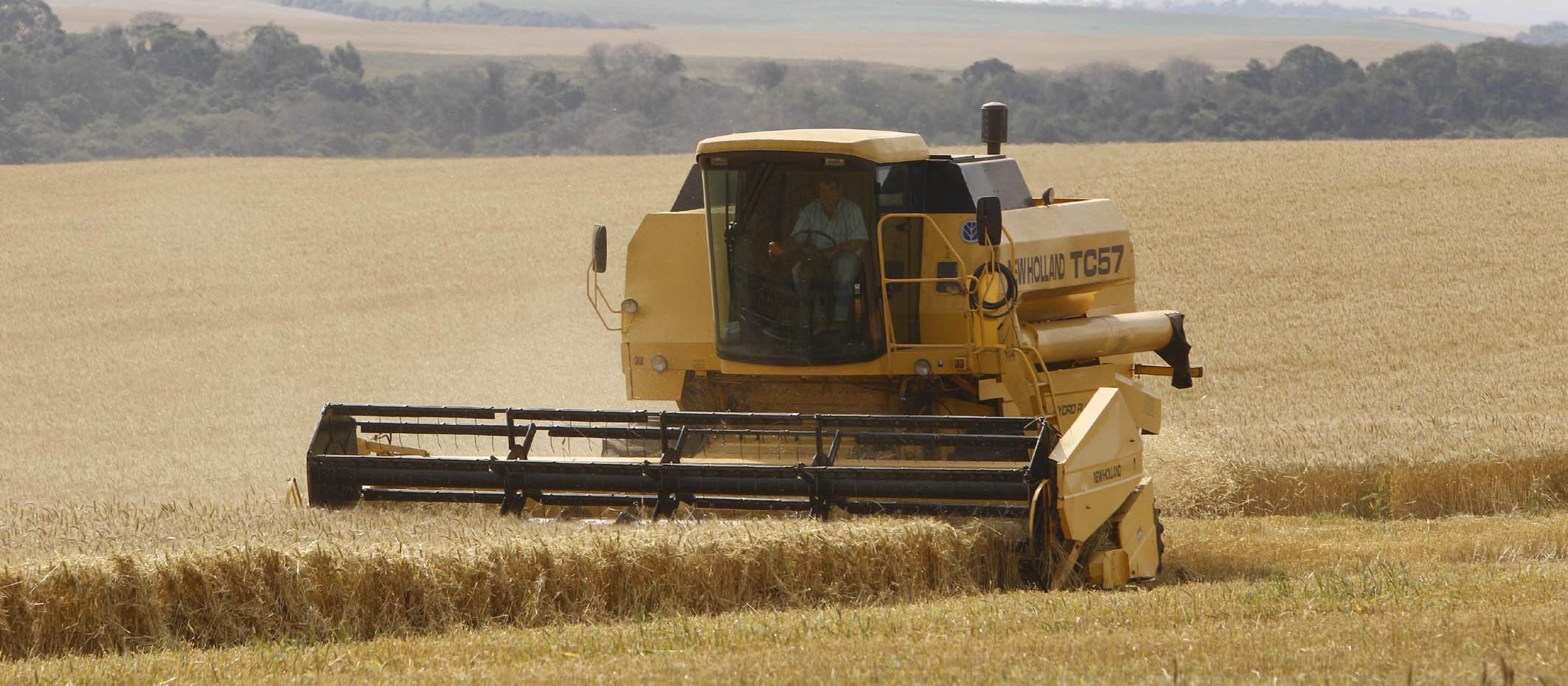 Seguro Rural: o que aconteceu neste ano e o que está previsto para 2020