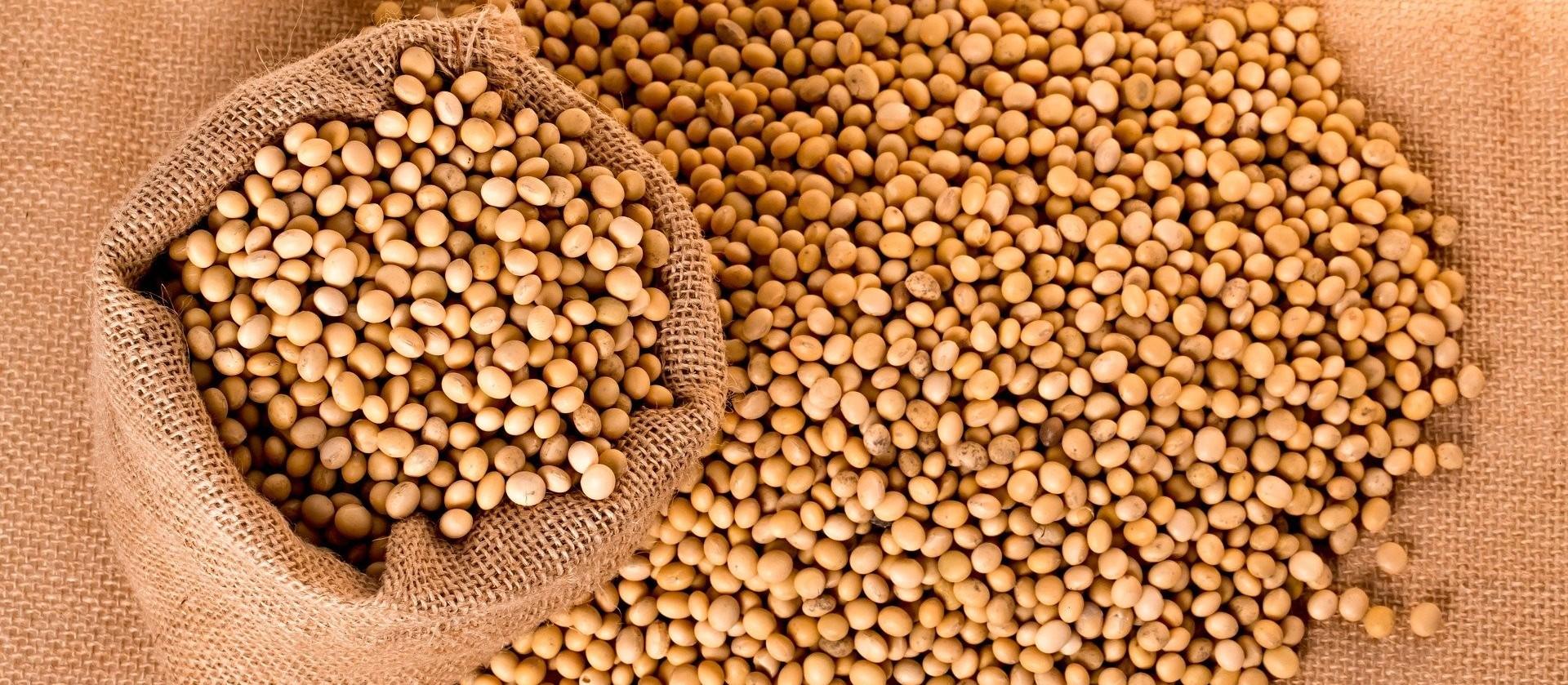 Comercialização de soja na safra 2019/20 do Brasil avança para 87,5%