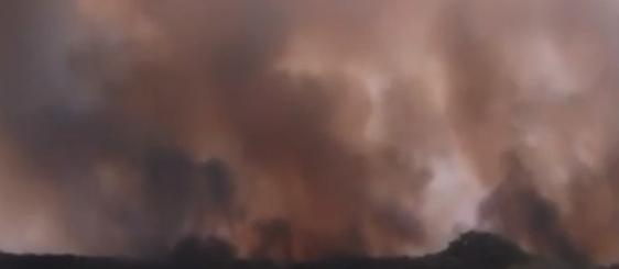 Novo foco de incêndio atinge o Parque Nacional de Ilha Grande