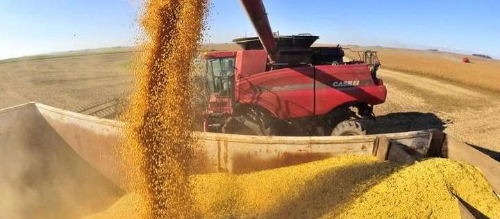 Seca prejudicou safra de soja no Paraná