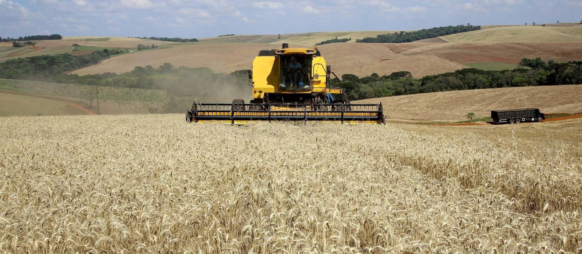 Safra de grãos do Paraná deve atingir 23 milhões de toneladas
