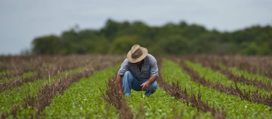 """""""Engenharia agronômica é uma profissão do futuro"""""""