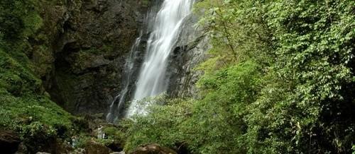 Paraná possui uma das reservas naturais de maior extensão do Brasil
