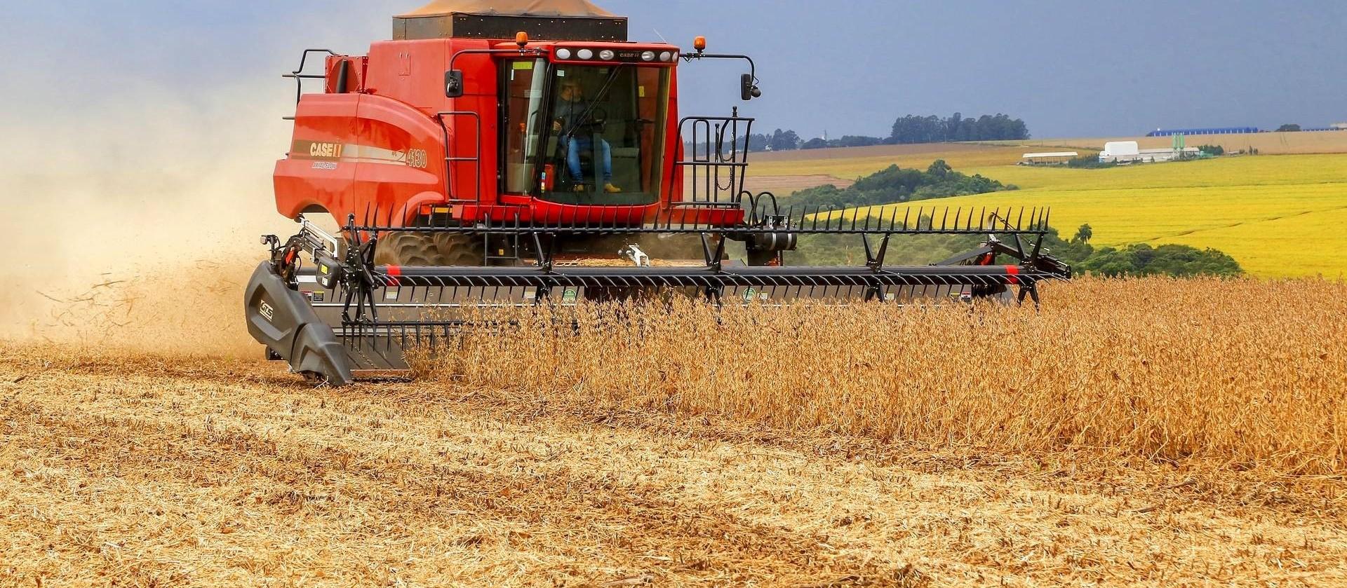 Área de plantio da soja deve aumentar 6,7% na próxima safra