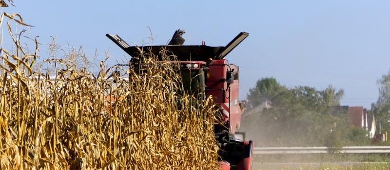 Produção rural: Plano Safra 2019/2020 traz novas opções de financiamento