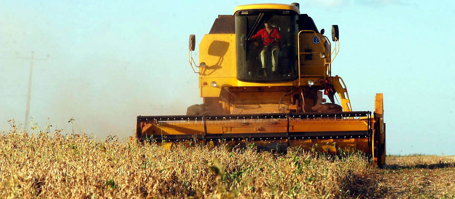 VBP agropecuário do Paraná de 2019 pode atingir R$ 93 bilhões