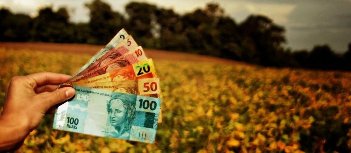 Governo inclui montante de R$ 1 bi para Programa de Subvenção ao Prêmio do Seguro Rural