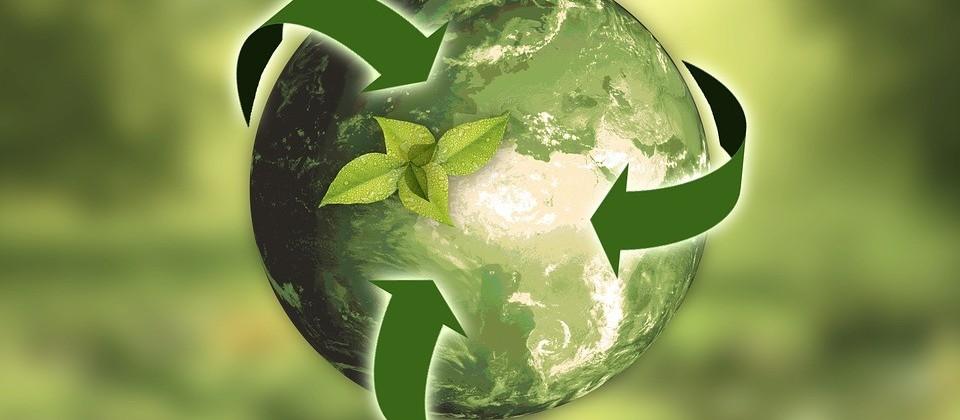 Quatro estudos sobre futuro sustentável são apresentados ao Senado