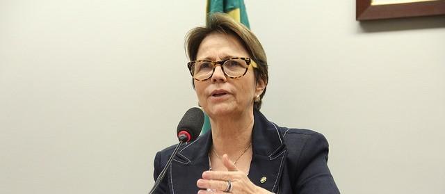 Lideranças do agronegócio de Maringá comemoram anúncio