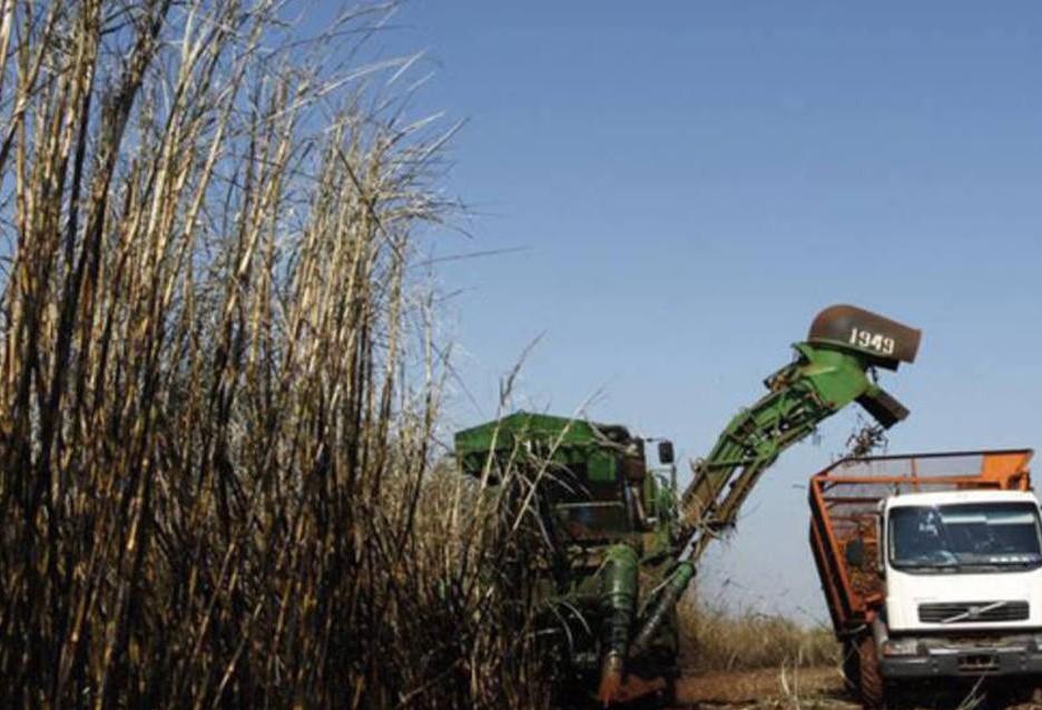 Venda de etanol na 1ª quinzena de fevereiro cresce, diz Unica