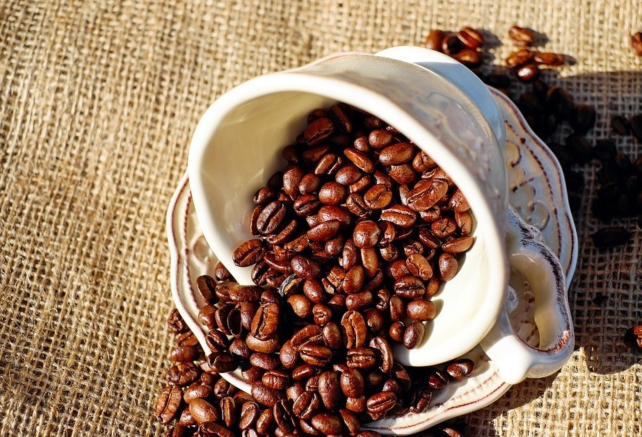 Café em coco custa R$ 6,45 kg em Maringá