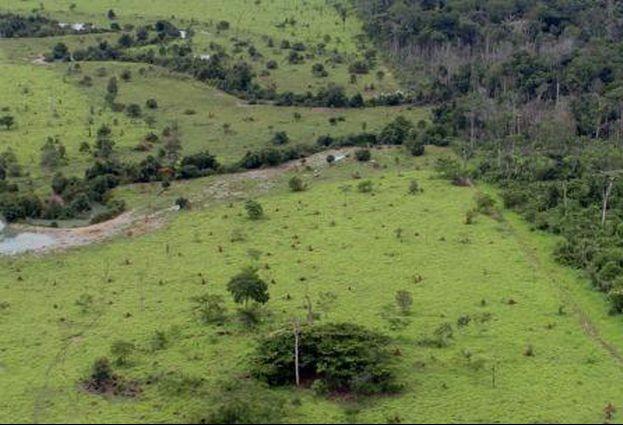 Prorrogado o prazo para adesão ao Programa de Regularização Ambiental