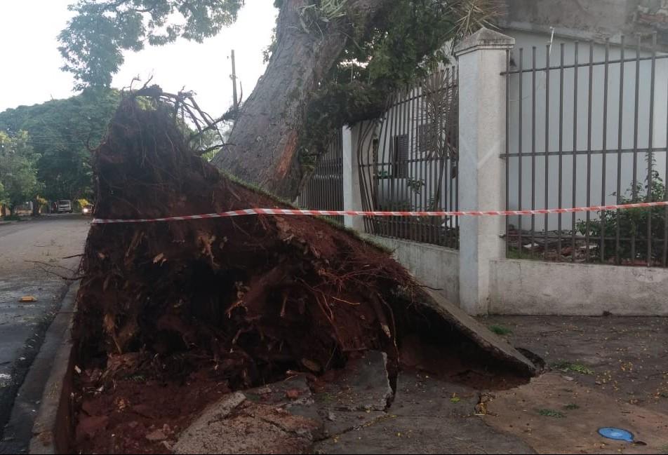 Temporal causa estragos em Maringá e deixa 24 mil imóveis sem luz