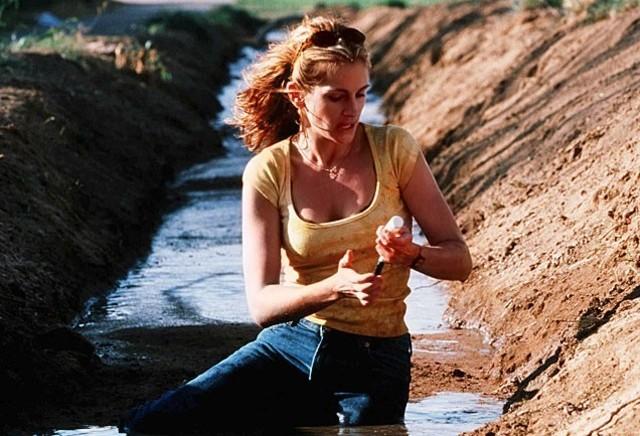 Filmes que retratam histórias de crimes ambientais