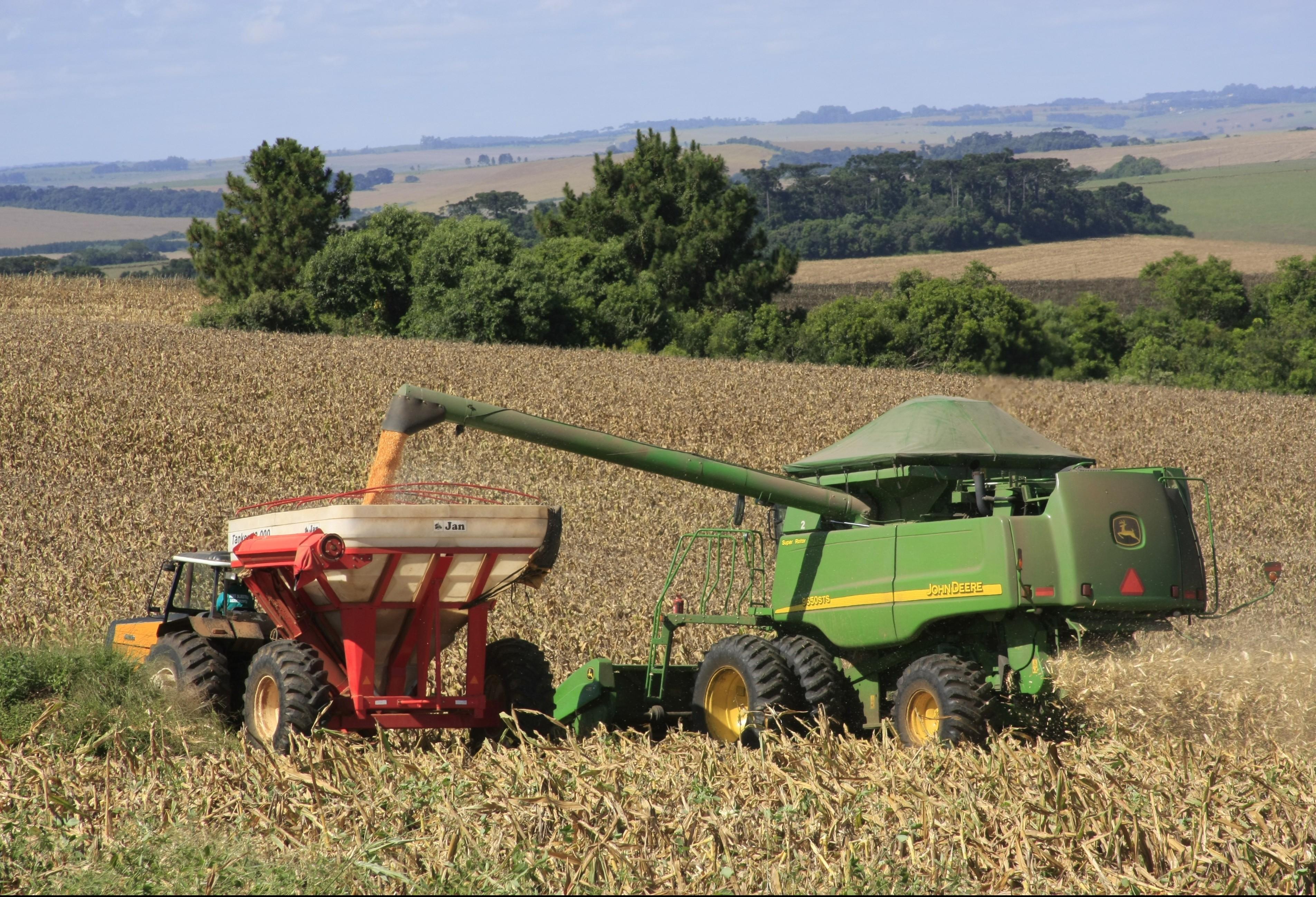 Colheita da safra de grãos começa com atraso no Paraná