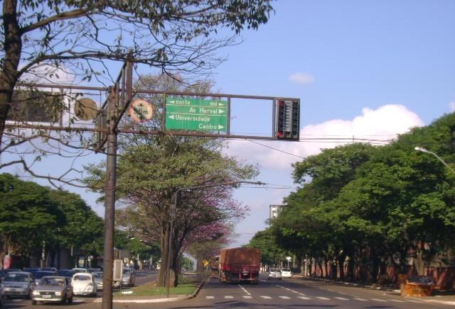 Índices de acidentes, mortes e feridos caem na Avenida Colombo