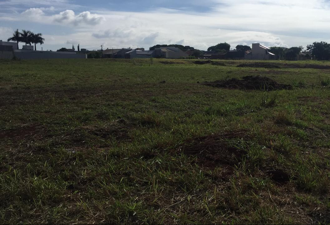 Parque de TI será o Vale do Silício  de Maringá, diz prefeito