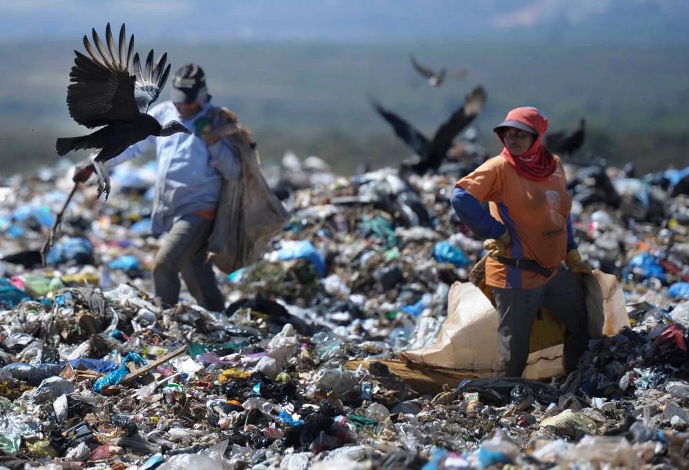 Brasil perde cerca de R$ 3 bilhões ao ano por não reciclar lixo