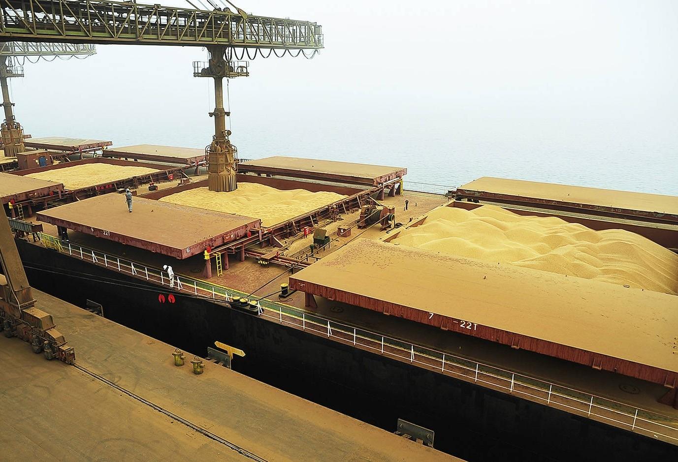 Divergência comercial entre China e EUA trazem alta na cotação da soja brasileira