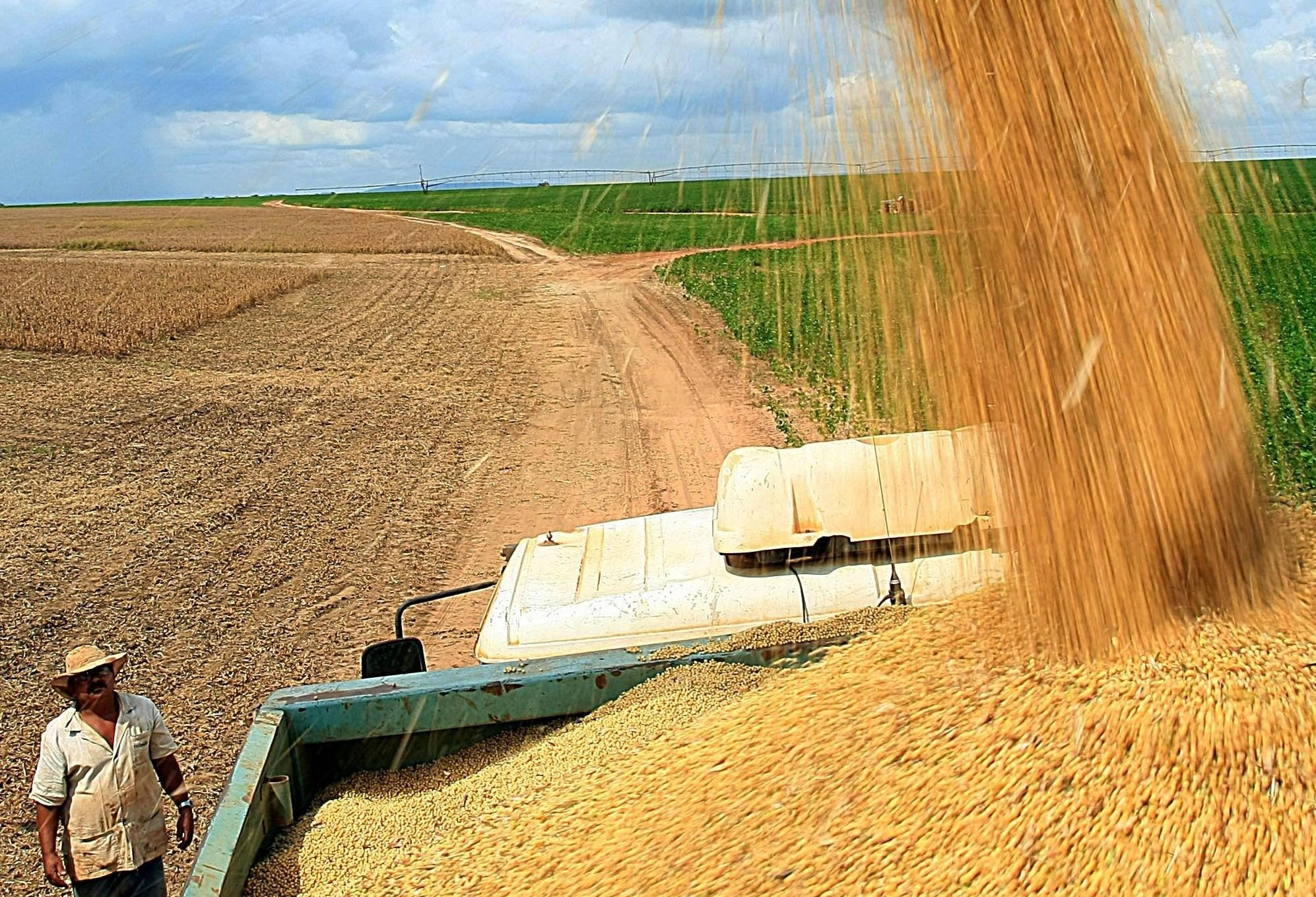 Atividade agropecuária teve redução de rentabilidade, avalia CNA