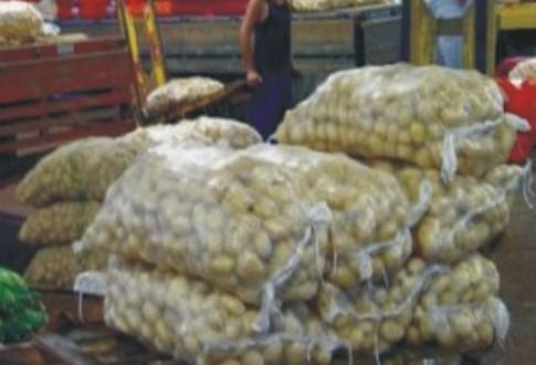 Saca de batata está R$ 160 mais cara por causa da greve dos caminhoneiros