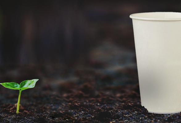 Ilha de Santa Helena quer tornar obrigatório uso de embalagens biodegradáveis