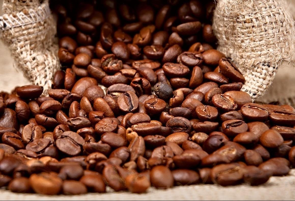 Saca do café custa R$ 380 em Umuarama