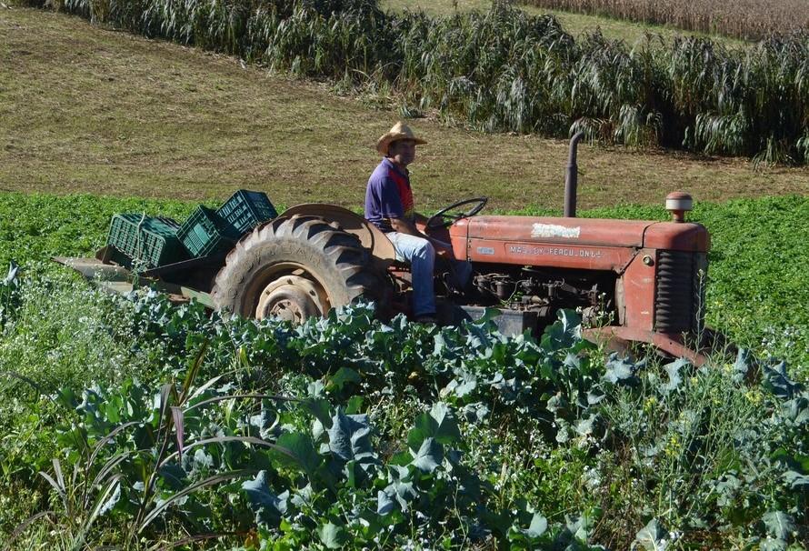 Capacidade de armazenamento valoriza produtos agrícolas