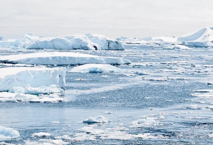 Nos últimos cinco anos, nível de derretimento da antártida triplicou
