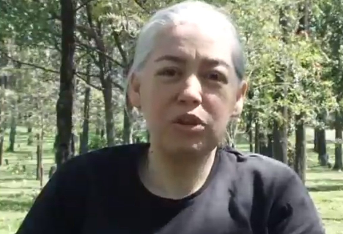 Morre em Maringá a ambientalista Ana Domingues