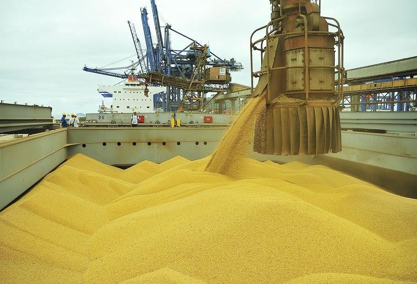 Estimativa para produção mundial de soja aumenta 2%