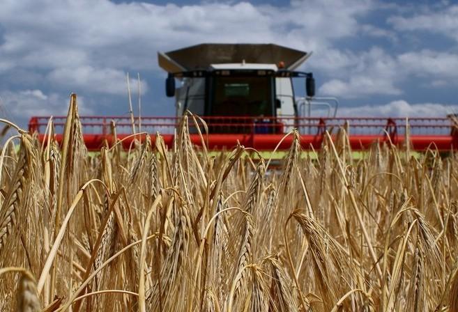 VBP da agropecuária é estimado em R$ 617 bilhões, com base em dados de novembro