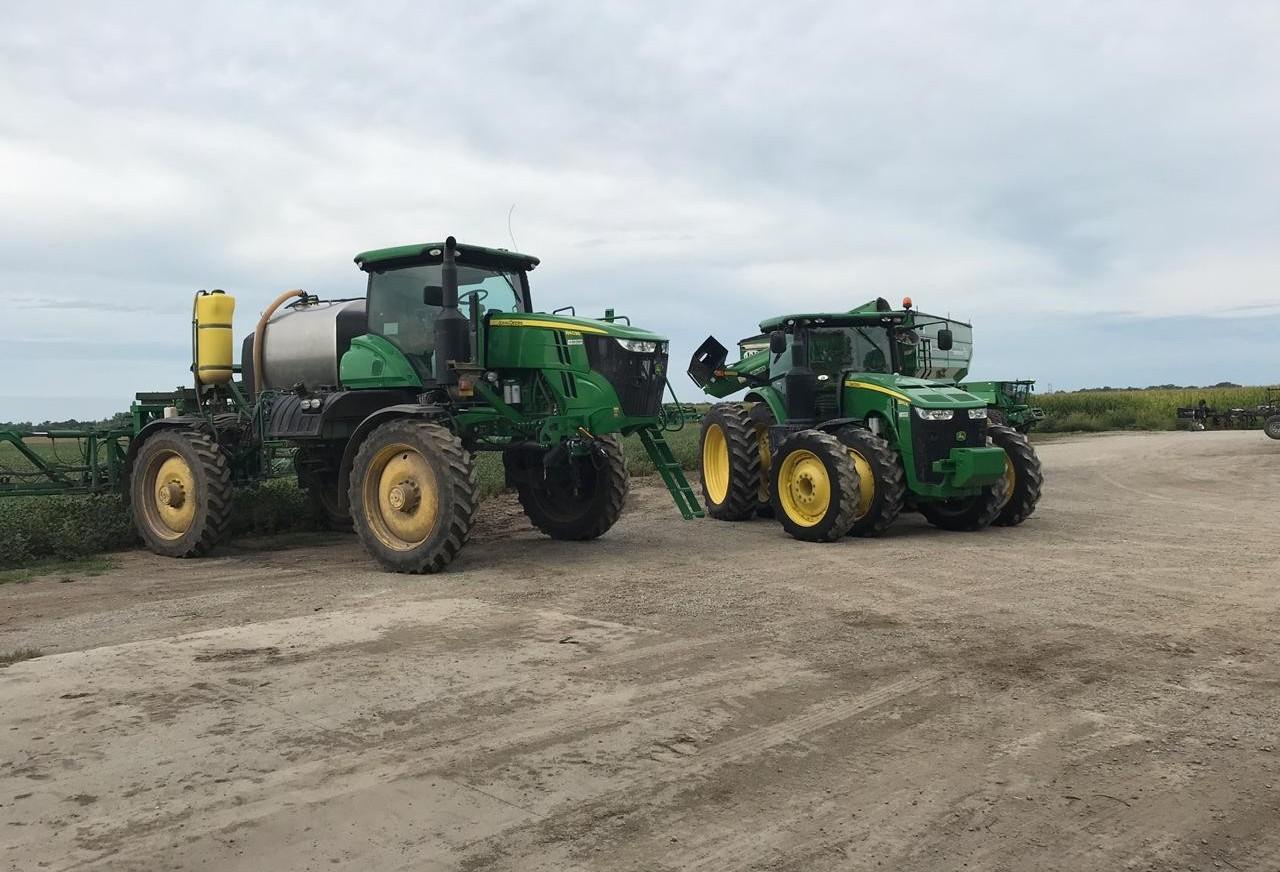 Falta de chuva faz produtor optar por soja convencional