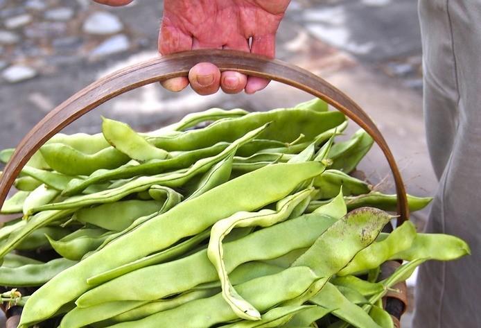 Preço do feijão sobe no Paraná