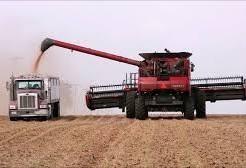 Neve nos EUA atrasa colheita de grãos