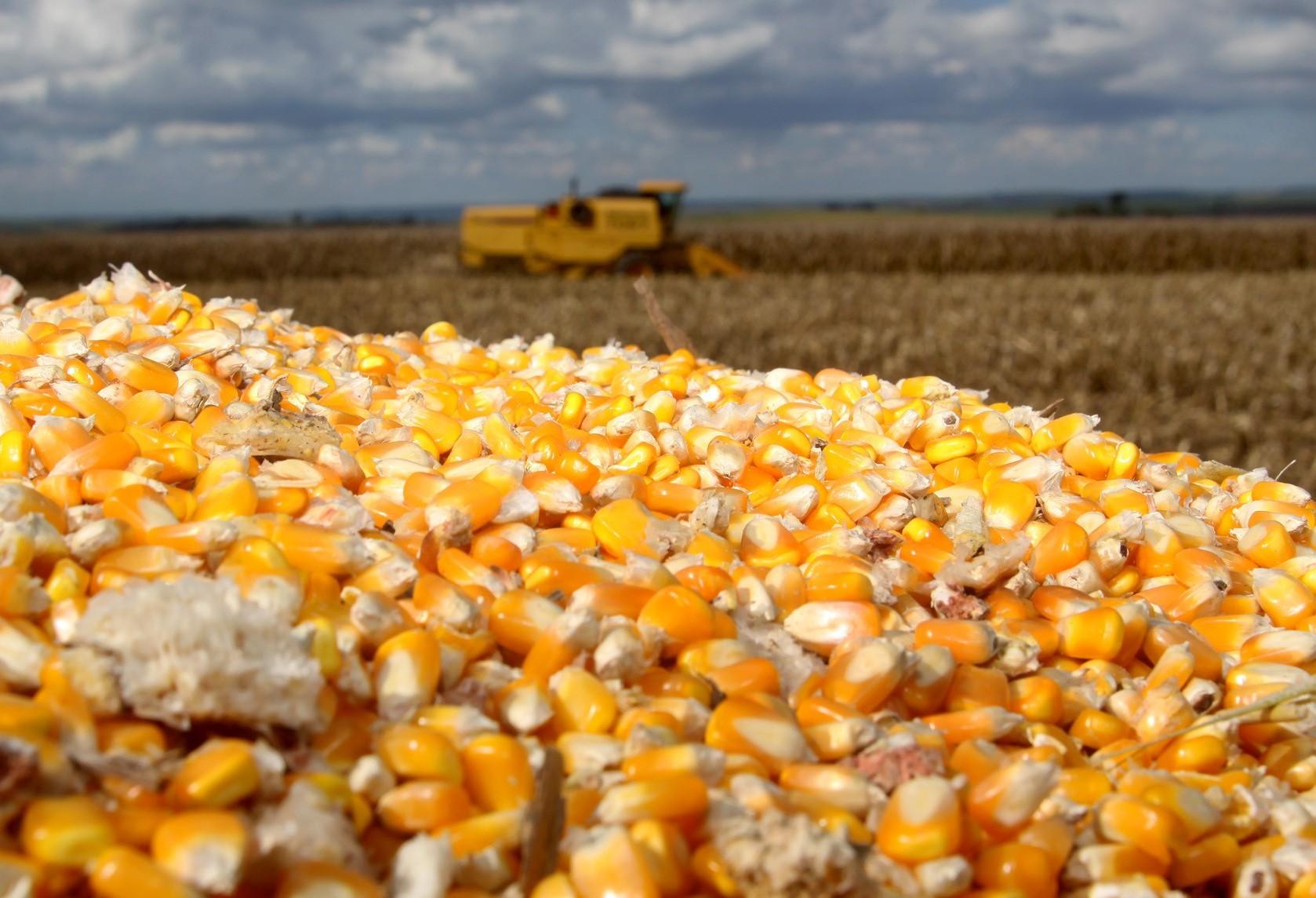Pouca alteração no mercado agrícola