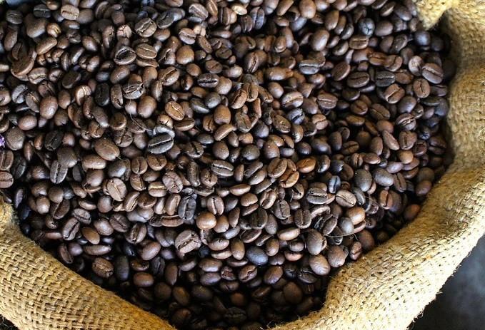 Café em coco custa R$ 6,25 kg