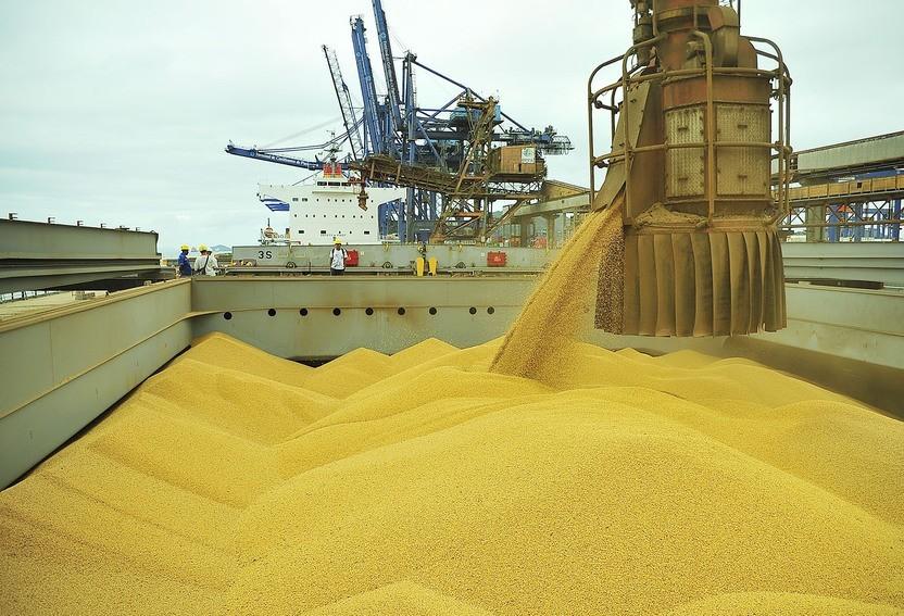 Brasil é o terceiro maior exportador agrícola do mundo