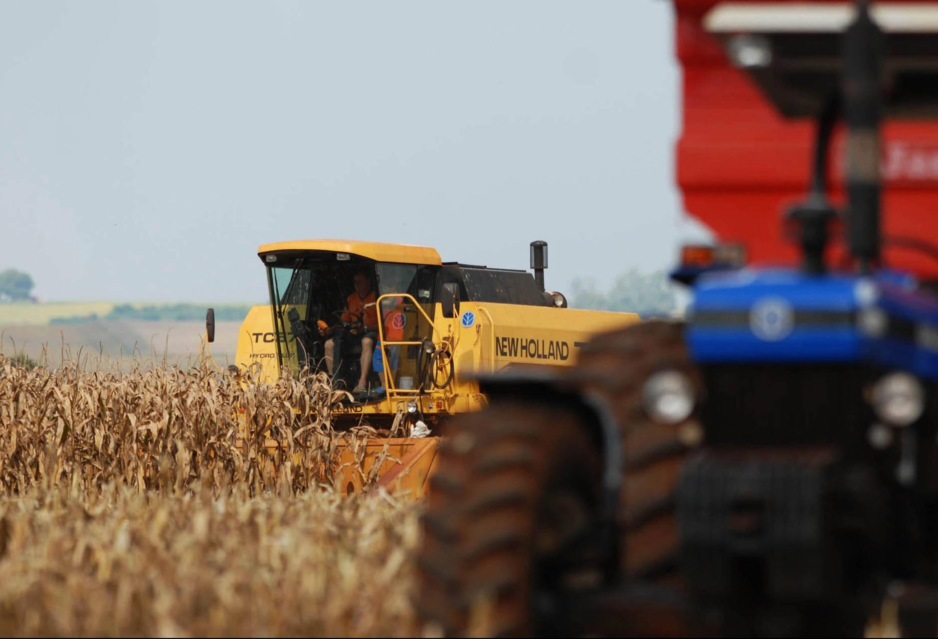 Chuva deve continuar escassa até o fim de janeiro e produtores estão em alerta