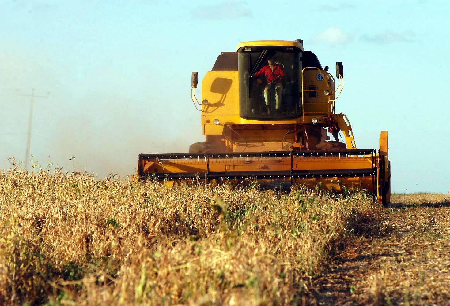 Colheita da soja chega ao fim com recorde de produção