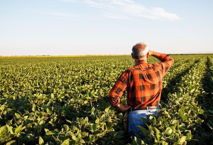 Governo prorroga prazo do Programa de Regularização Tributária Rural