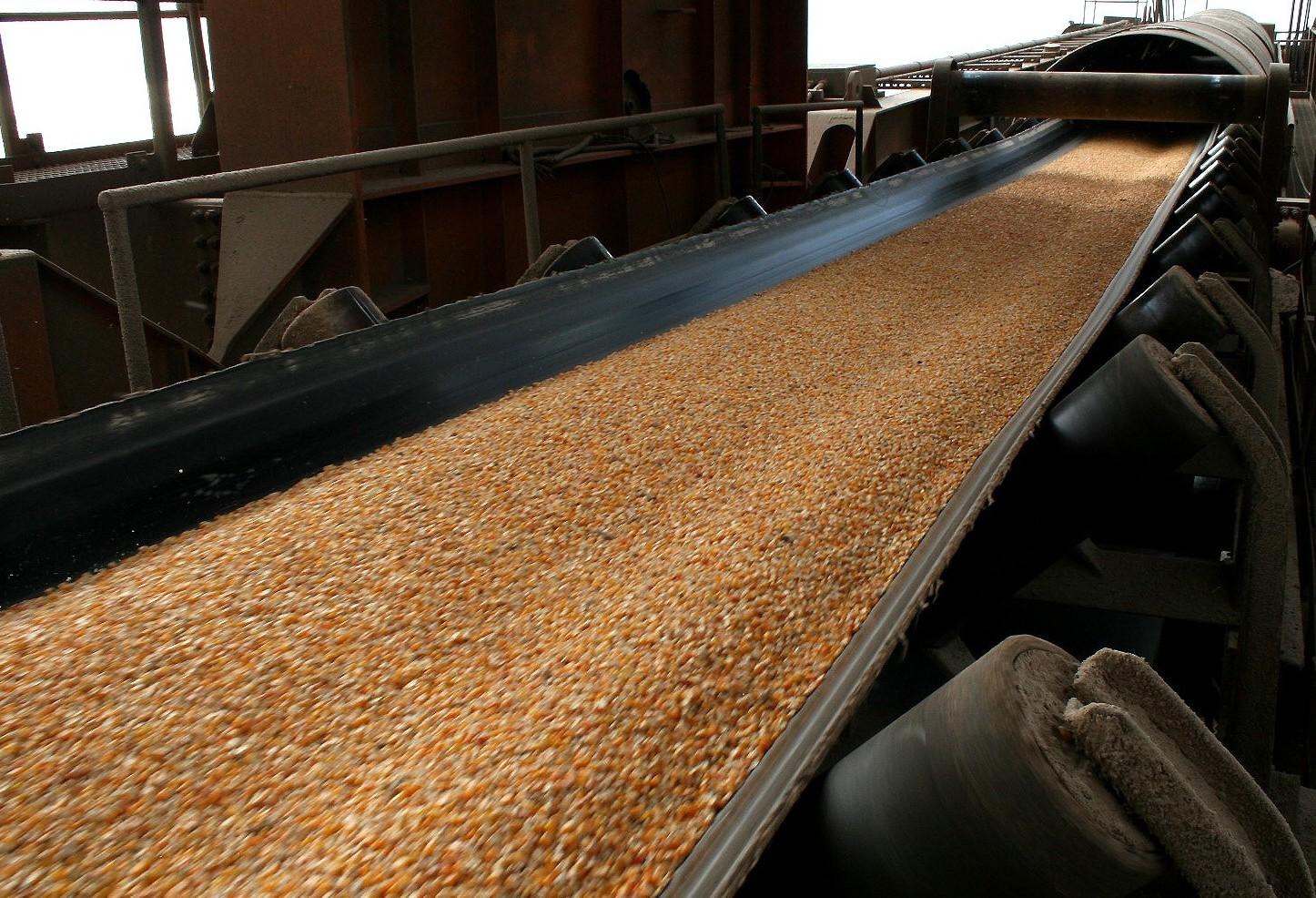 JBS importa milho para usar como ração no sul de Santa Catarina