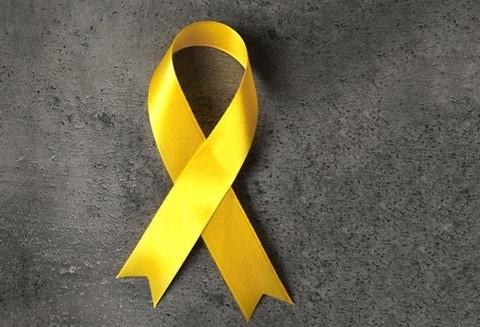 Conselho da Juventude realiza ação devido ao Setembro Amarelo