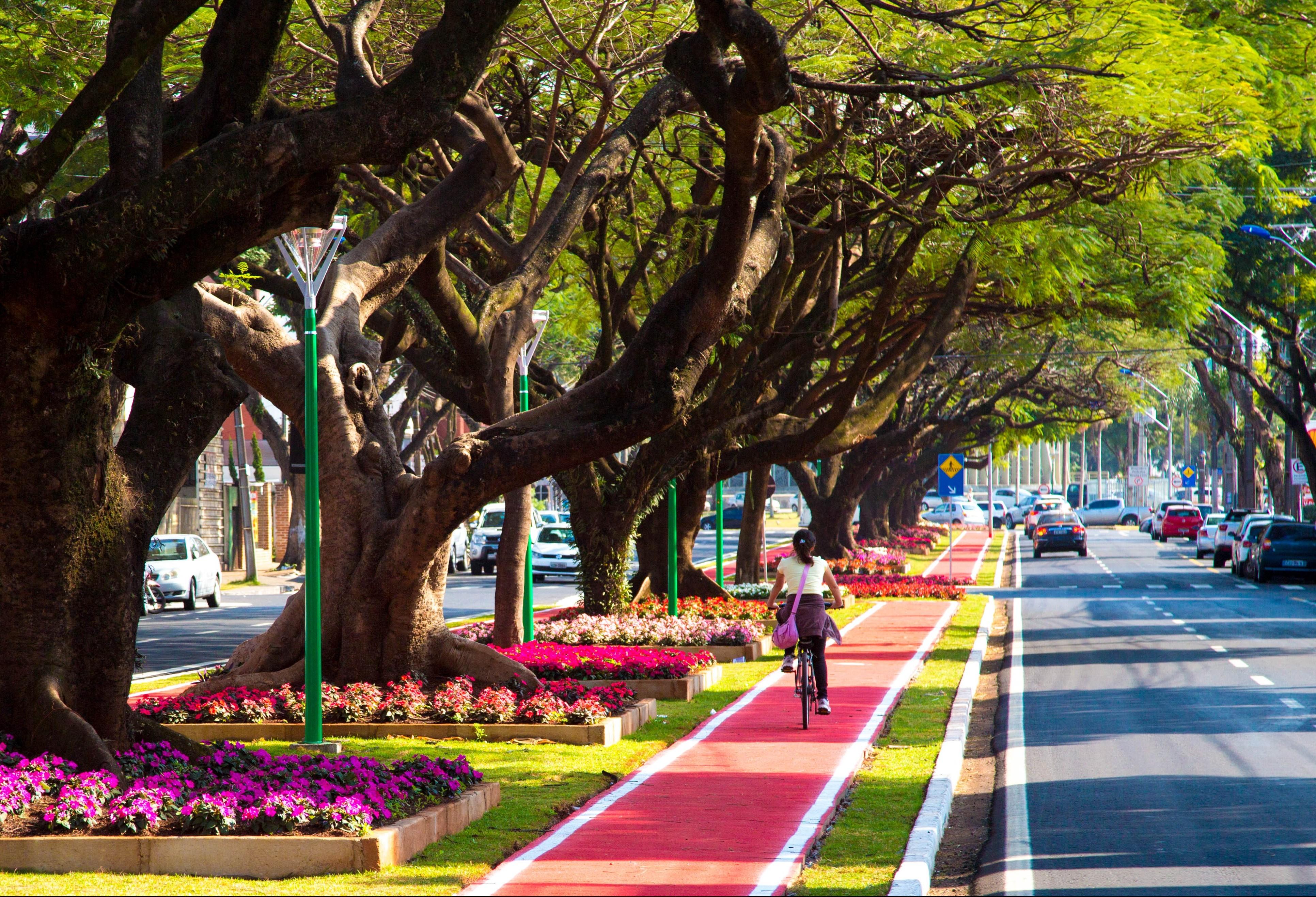 Novas ciclovias começam a ser construídas em Maringá