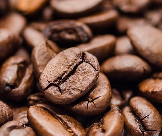 Café em coco custa R$ 6,78 kg em Maringá
