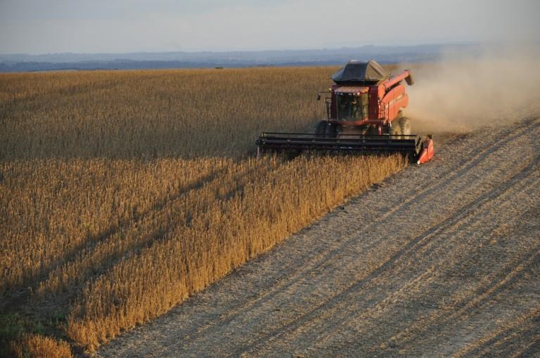 Safra de soja 2020/21 do Paraná é estimada em 20,38 mi de toneladas
